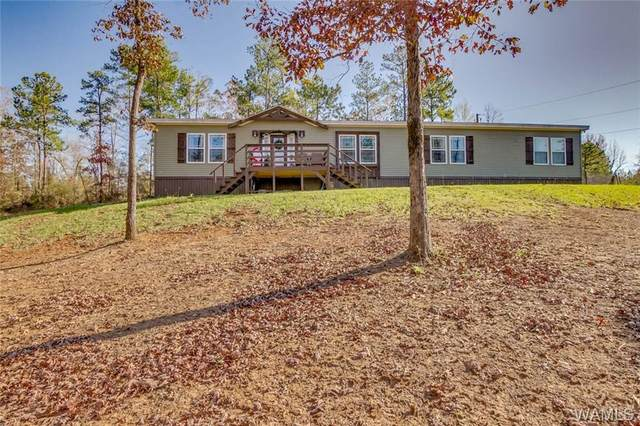 247 Eoline Pass, CENTREVILLE, AL 35042 (MLS #141301) :: The K|W Group
