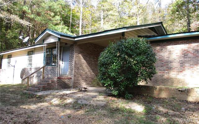 6471 County Road 35, FAYETTE, AL 35555 (MLS #141350) :: The Gray Group at Keller Williams Realty Tuscaloosa