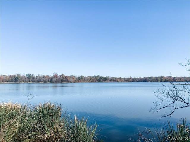 82 Black Warrior Bay, SAWYERVILLE, AL 35441 (MLS #141395) :: The Advantage Realty Group