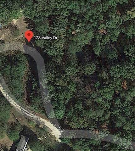 178 Valley Drive, HAMILTON, AL 35570 (MLS #141626) :: The Gray Group at Keller Williams Realty Tuscaloosa