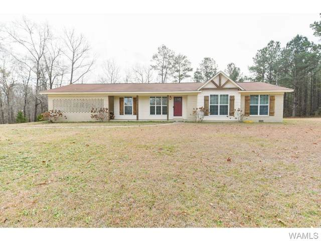 10289 Pate Road, BUHL, AL 35446 (MLS #141719) :: The Gray Group at Keller Williams Realty Tuscaloosa