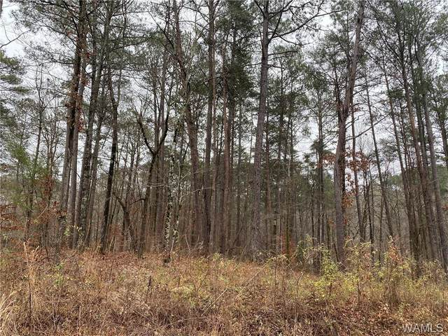 Lot 21 Teddy Drive, MCCALLA, AL 35111 (MLS #141912) :: The Gray Group at Keller Williams Realty Tuscaloosa