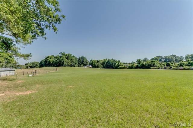 338 Black Walnut Drive, MOUNDVILLE, AL 35474 (MLS #141954) :: The Advantage Realty Group