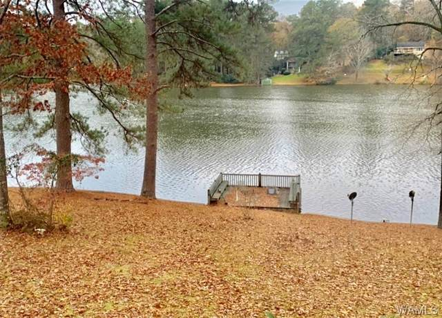 4902 Northwood Lake Drive E, NORTHPORT, AL 35573 (MLS #142062) :: The Advantage Realty Group