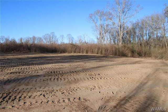0 County Road 28, SAWYERVILLE, AL 36776 (MLS #142075) :: The Advantage Realty Group