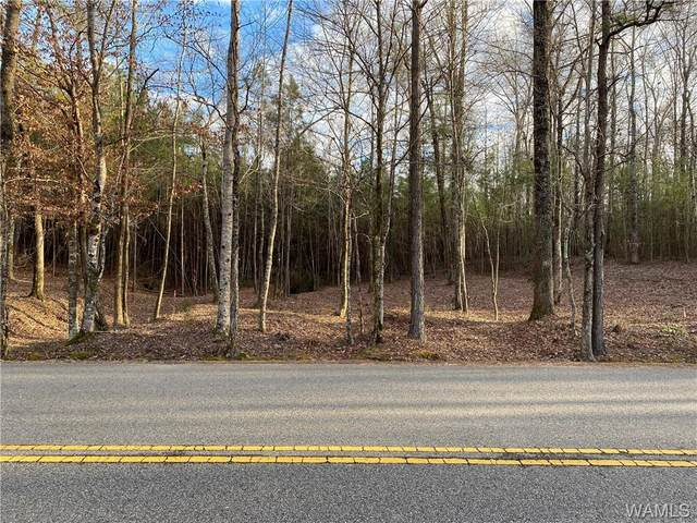 6 Holly Springs Road, NORTHPORT, AL 35475 (MLS #142095) :: Caitlin Tubbs with Hamner Real Estate