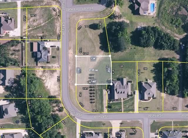 12983 Joshua Street, NORTHPORT, AL 35475 (MLS #142460) :: The Gray Group at Keller Williams Realty Tuscaloosa