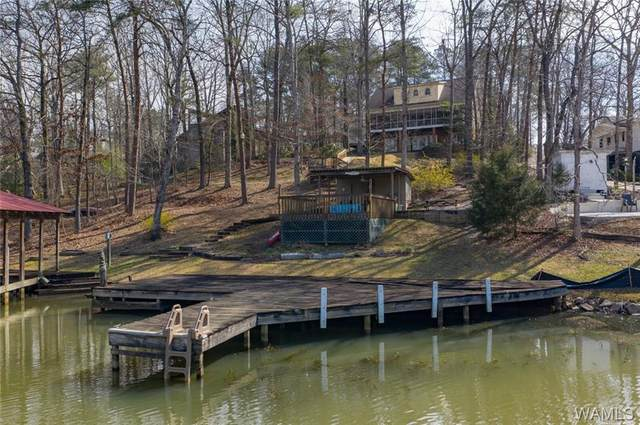15730 Beacon Point Drive, NORTHPORT, AL 35475 (MLS #142864) :: The K|W Group