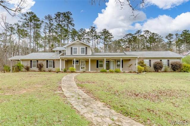 560 Dollar Road, NORTHPORT, AL 35473 (MLS #143015) :: The Advantage Realty Group