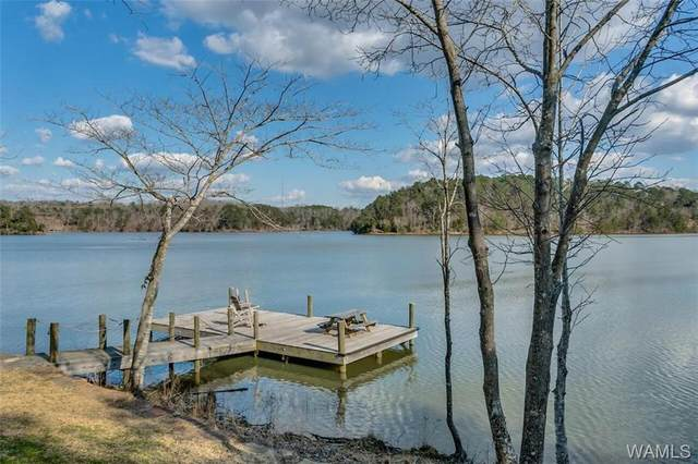14266 Legacy Circle, NORTHPORT, AL 35475 (MLS #143024) :: The Advantage Realty Group