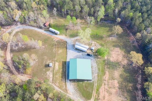 607 County Road 9, FAYETTE, AL 35555 (MLS #143328) :: The Gray Group at Keller Williams Realty Tuscaloosa