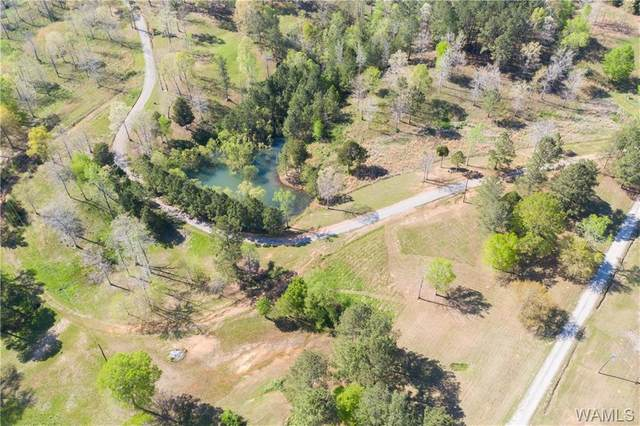 0 Hurricane Valley Rd, BROOKWOOD, AL 35444 (MLS #143404) :: The Advantage Realty Group