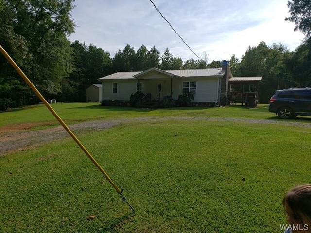 1743 Patton Hill Rd, TOWNLEY, AL 35587 (MLS #143439) :: The Alice Maxwell Team