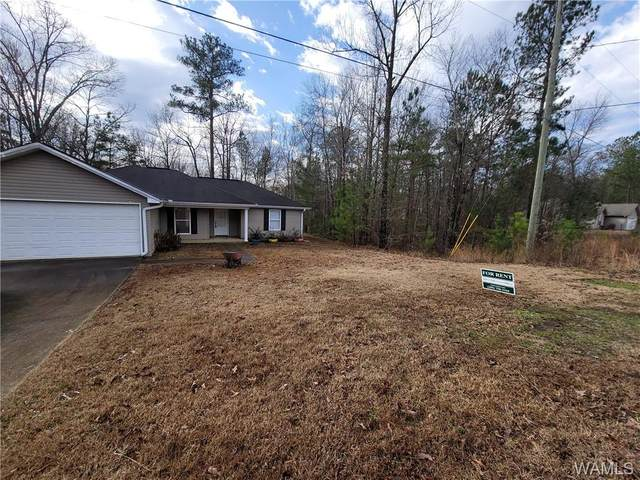 20397 Castle Ridge Road, MCCALLA, AL 35111 (MLS #143510) :: The K|W Group