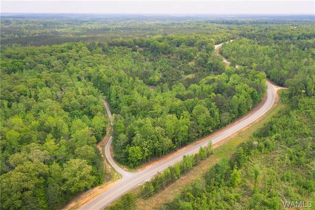 0 Yellow Creek Rd, TUSCALOOSA, AL 35406 (MLS #143676) :: The K|W Group