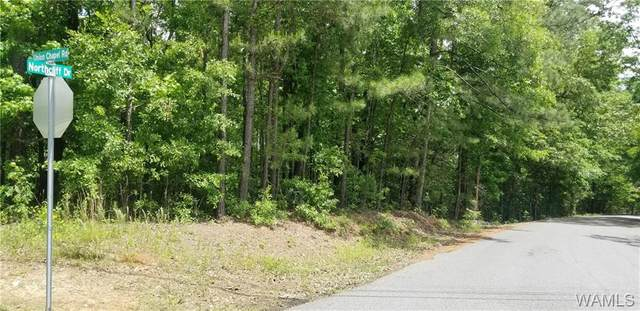 495 Union Chapel Road, NORTHPORT, AL 35473 (MLS #143801) :: The Alice Maxwell Team