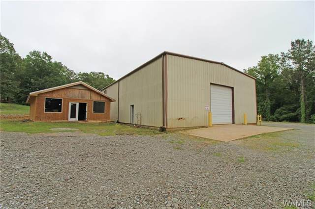 12150 Finnell Cutoff Road, NORTHPORT, AL 35475 (MLS #143865) :: The Advantage Realty Group