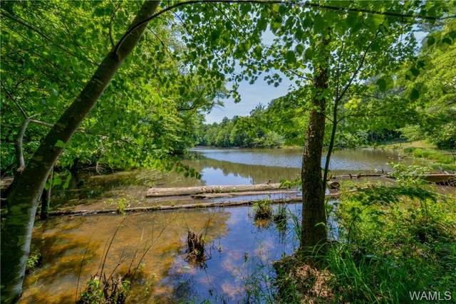 00 Acker-Bennet Parkway, COKER, AL 35452 (MLS #144012) :: The Alice Maxwell Team