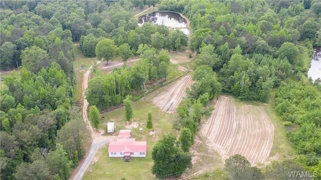 523 Snider Road, GORDO, AL 35466 (MLS #144032) :: The Gray Group at Keller Williams Realty Tuscaloosa