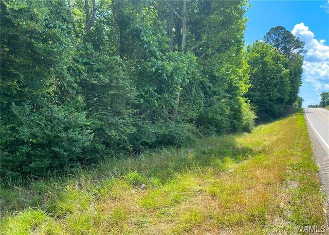 0 Alabama State Route 10 Highway, Dixon Mills, AL 36736 (MLS #144174) :: The Advantage Realty Group