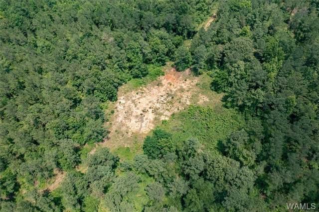 0 Malone Creek Road, GORDO, AL 35466 (MLS #144283) :: The Gray Group at Keller Williams Realty Tuscaloosa