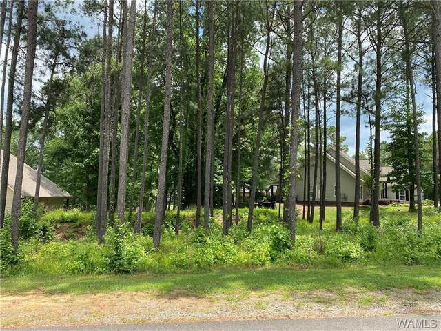 10644 Legacy Point Drive, NORTHPORT, AL 35475 (MLS #144307) :: The Advantage Realty Group