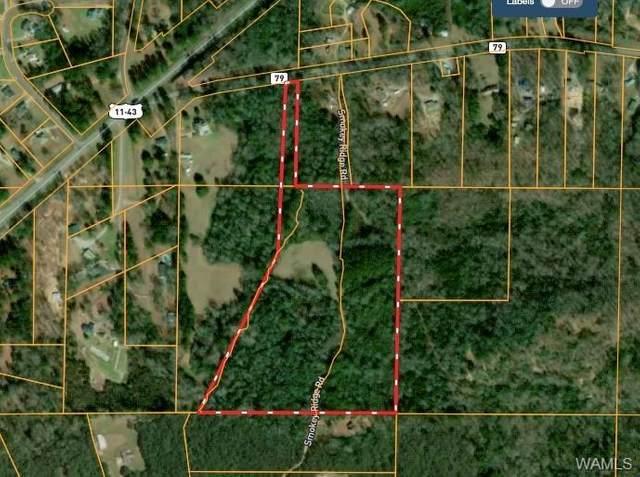 0 Sylvan Loop Road, FOSTERS, AL 35463 (MLS #144360) :: The Gray Group at Keller Williams Realty Tuscaloosa