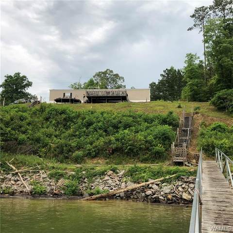 3659 Old Arley Rd, OTHER, AL 35572 (MLS #144372) :: The Advantage Realty Group
