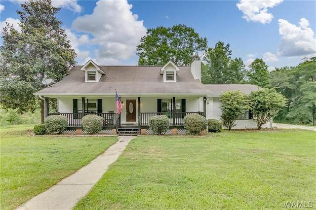 6902 Canyon Mill Rd Road, COTTONDALE, AL 35453 (MLS #144658) :: The K W Group