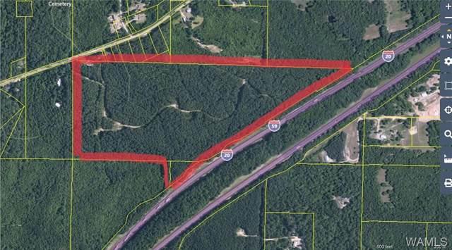 00 Sylvan Loop Road, FOSTERS, AL 35463 (MLS #144674) :: The Advantage Realty Group