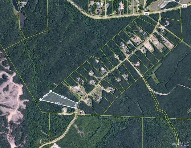 000 Crisstown Road, VANCE, AL 35490 (MLS #144891) :: The K W Group