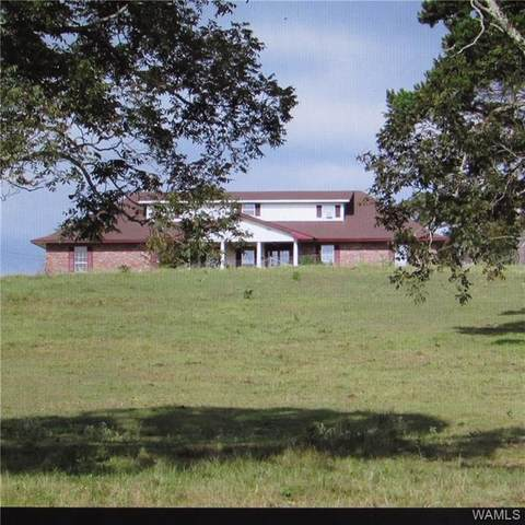 1041 Co Hwy 63, WINFIELD, AL 35594 (MLS #144953) :: The Advantage Realty Group
