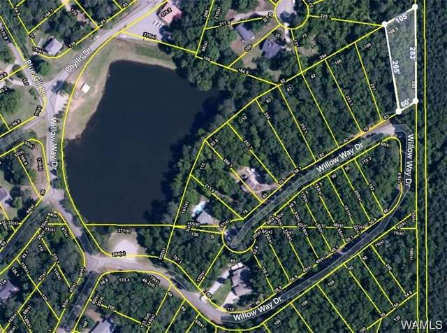000 Willow Way Drive, LAKE VIEW, AL 35111 (MLS #145079) :: The Alice Maxwell Team
