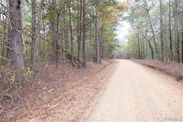 0 Gas Line Road, NORTHPORT, AL 35475 (MLS #145149) :: The Advantage Realty Group