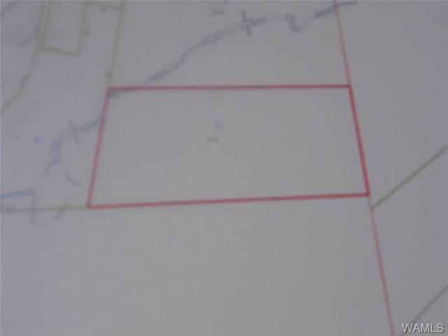 6400 M L King Jr. Blvd, TUSCALOOSA, AL 35401 (MLS #145163) :: The Advantage Realty Group