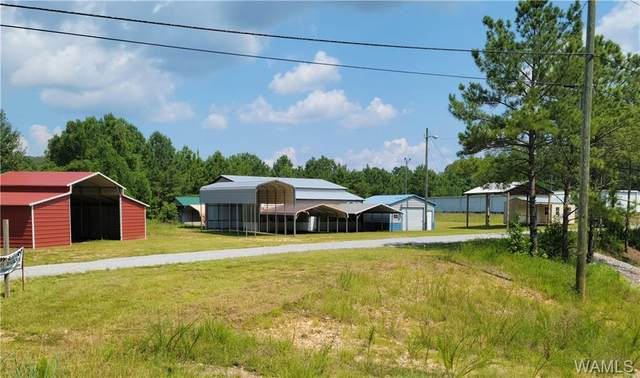 0 Hwy 43 N, NORTHPORT, AL 35475 (MLS #145209) :: The Advantage Realty Group