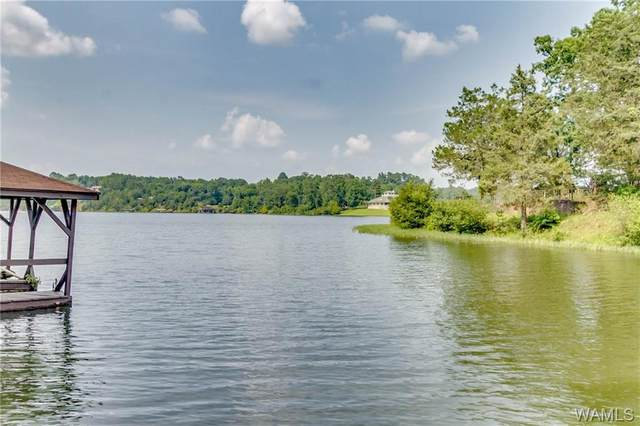 15163 Burnt Pines Road, NORTHPORT, AL 35475 (MLS #145298) :: The Advantage Realty Group