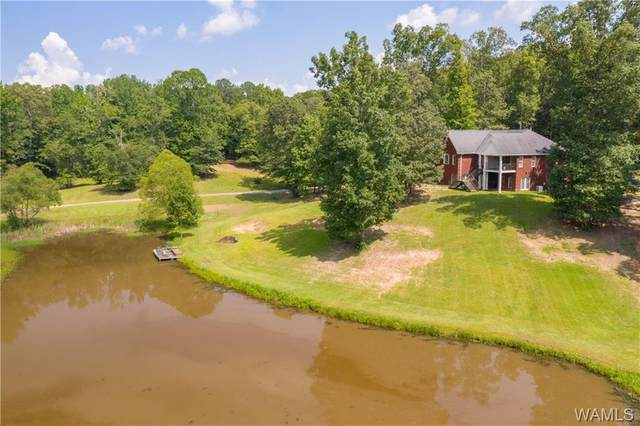 6905 Clements Foley Road, NORTHPORT, AL 35473 (MLS #145318) :: The Alice Maxwell Team