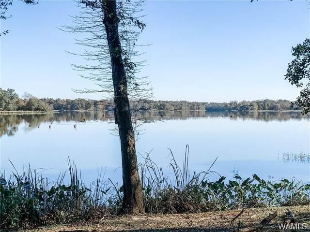 48 Cypress Point Lane, AKRON, AL 35441 (MLS #145373) :: The Gray Group at Keller Williams Realty Tuscaloosa