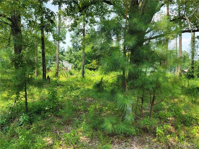 107 Rivermont Circle, PICKENSVILLE, AL 35447 (MLS #145384) :: The Advantage Realty Group