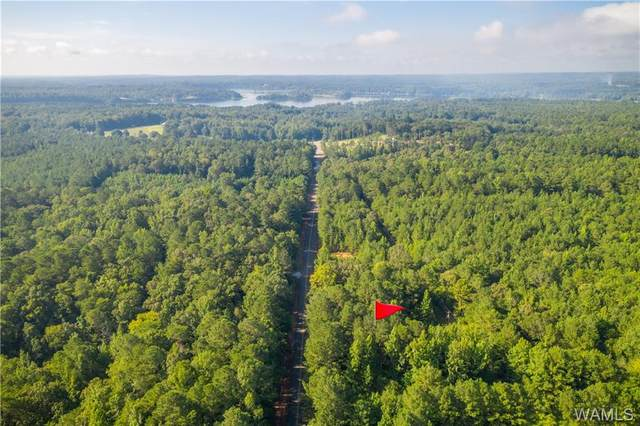 11828 Finnell Cutoff Road, NORTHPORT, AL 35475 (MLS #145731) :: The Gray Group at Keller Williams Realty Tuscaloosa