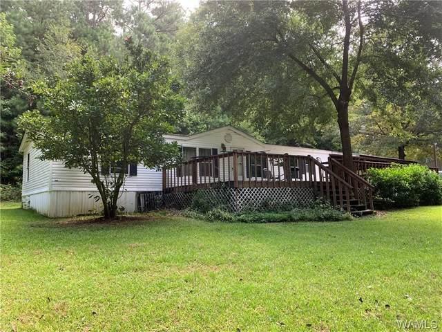 15765 Cardinal Drive, NORTHPORT, AL 35475 (MLS #145822) :: The Gray Group at Keller Williams Realty Tuscaloosa