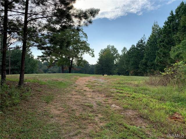 105 Co Road 783, MAPLESVILLE, AL 36750 (MLS #146026) :: The Gray Group at Keller Williams Realty Tuscaloosa