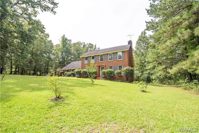 11351 Mount Vernon Drive, DUNCANVILLE, AL 35456 (MLS #146032) :: The Advantage Realty Group