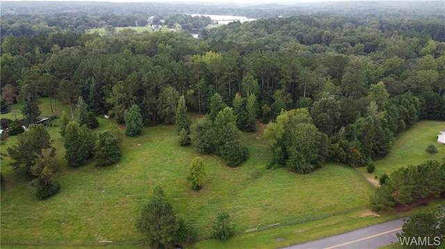 000 Cherokee Trail, NORTHPORT, AL 35475 (MLS #146126) :: The Advantage Realty Group