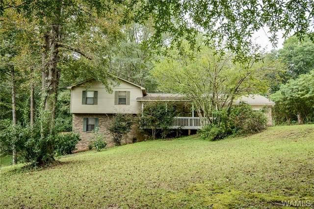 11242 Lake Robinwood Road, COKER, AL 35452 (MLS #146173) :: The Advantage Realty Group