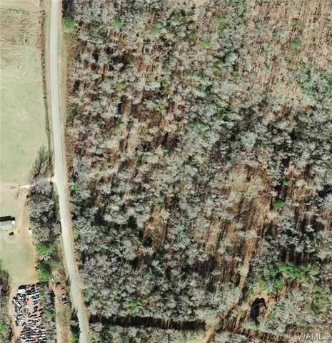 13655-13699 Bone Camp Road, COKER, AL 35452 (MLS #146251) :: The K|W Group