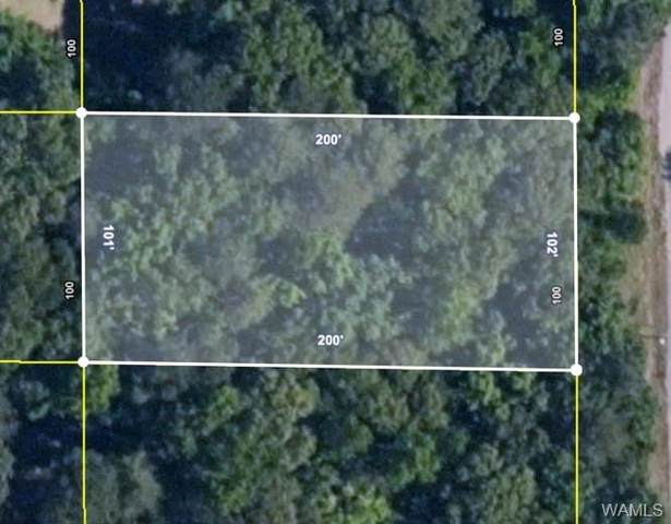 0 Mulligan Drive, TUSCALOOSA, AL 35444 (MLS #146263) :: The Advantage Realty Group