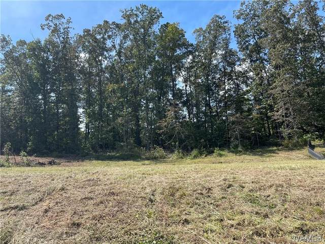 0 Valerie Dawn Way, NORTHPORT, AL 35475 (MLS #146265) :: The Advantage Realty Group