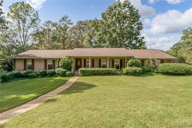 5908 Dove Creek Avenue, NORTHPORT, AL 35473 (MLS #146544) :: The Gray Group at Keller Williams Realty Tuscaloosa